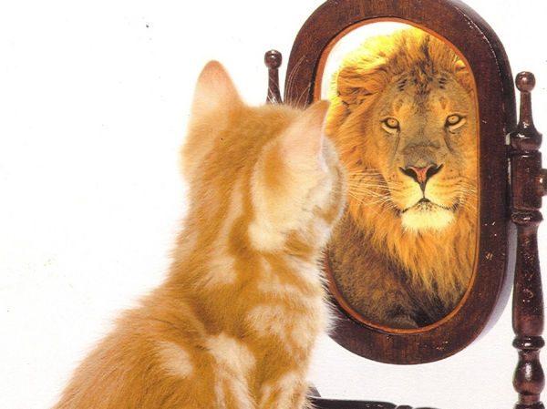 ¿Quieres mejorar tu autoestima?